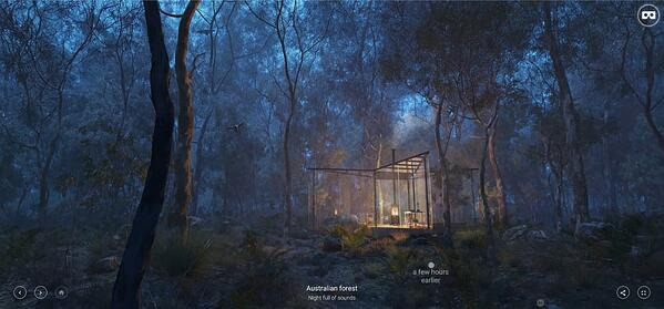 "Third Place: ""Australian Forest"" by Sergey Ferley"